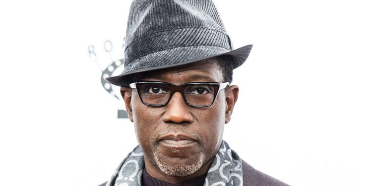 Actor Wesley Snipes owes IRS Millions In Taxes Again